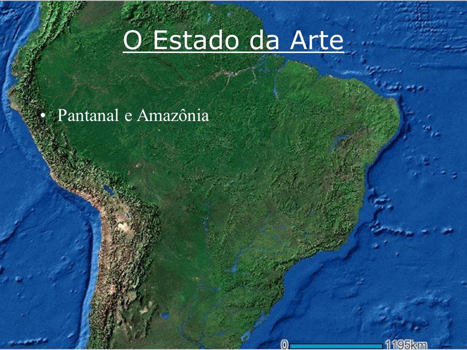 O Estado da Arte Pantanal e Amazônia www.riosvivos.org.br