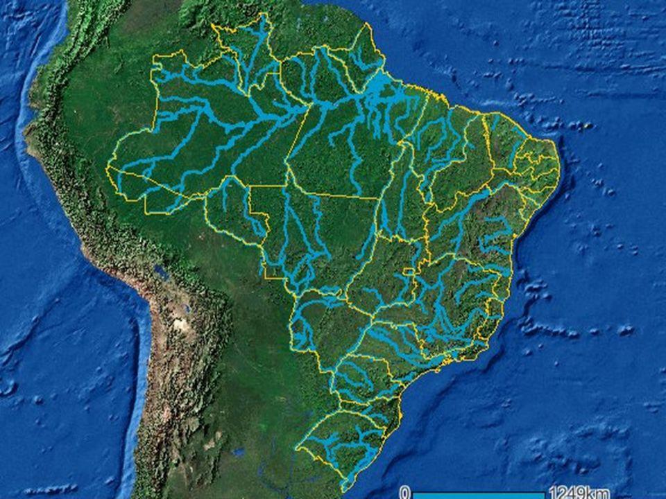 www.riosvivos.org.br