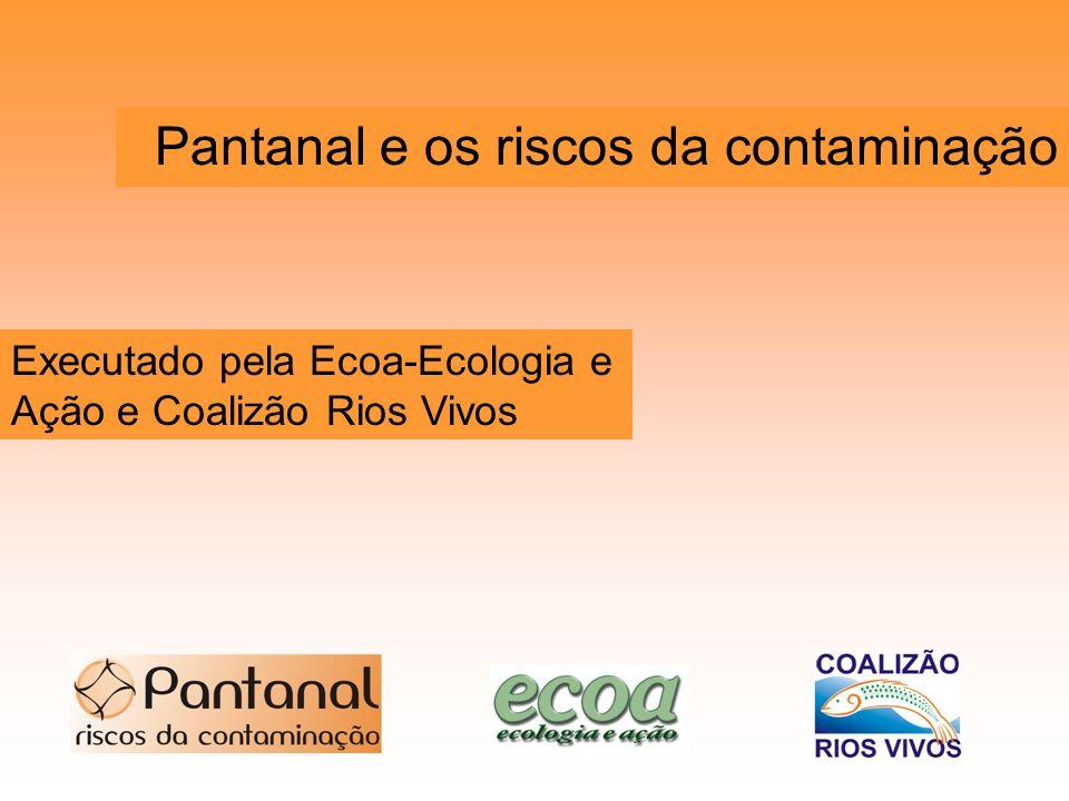 Pantanal e os riscos da contaminação