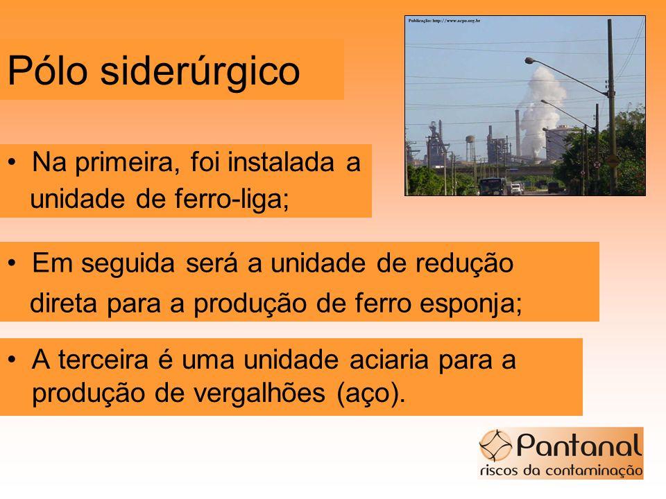 Pólo siderúrgico Na primeira, foi instalada a unidade de ferro-liga;