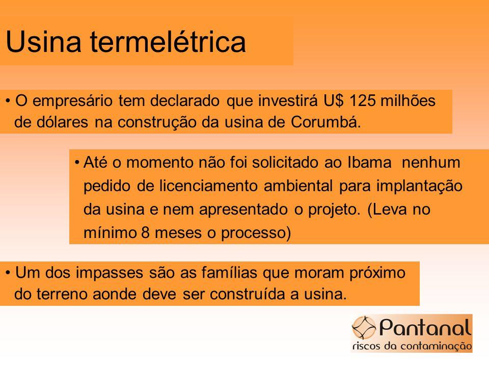 Usina termelétrica • O empresário tem declarado que investirá U$ 125 milhões. de dólares na construção da usina de Corumbá.