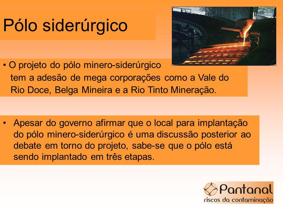 Pólo siderúrgico O projeto do pólo minero-siderúrgico