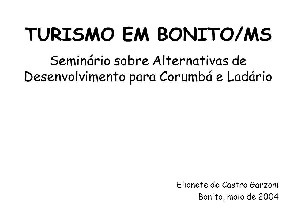 Seminário sobre Alternativas de Desenvolvimento para Corumbá e Ladário