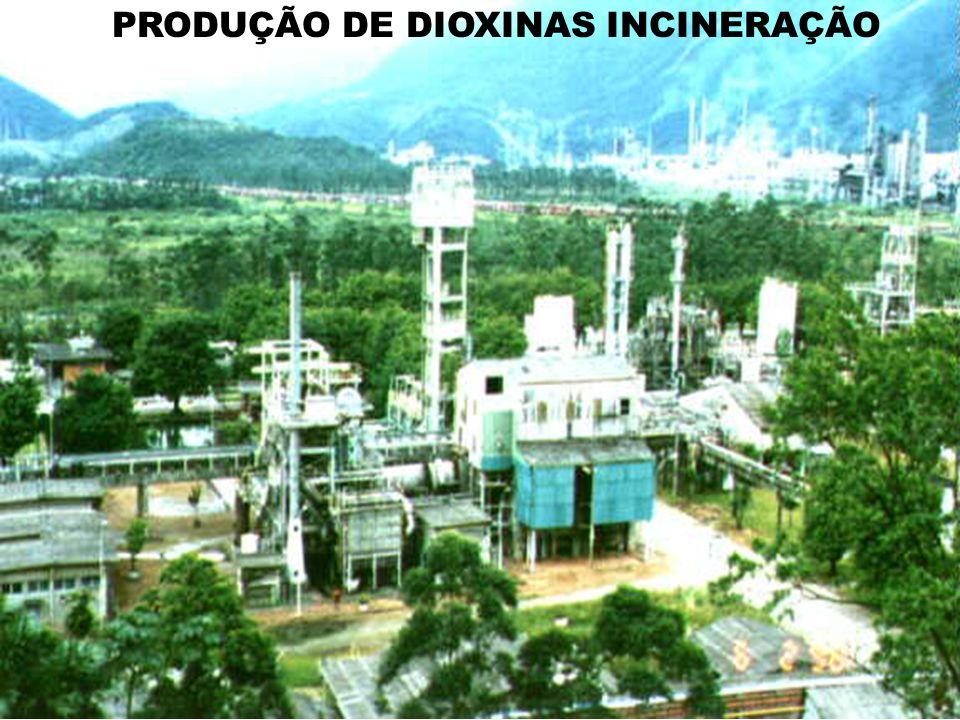 PRODUÇÃO DE DIOXINAS INCINERAÇÃO