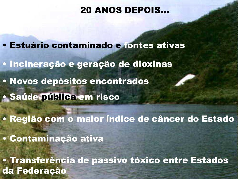20 ANOS DEPOIS... • Estuário contaminado e fontes ativas. • Incineração e geração de dioxinas. • Novos depósitos encontrados.