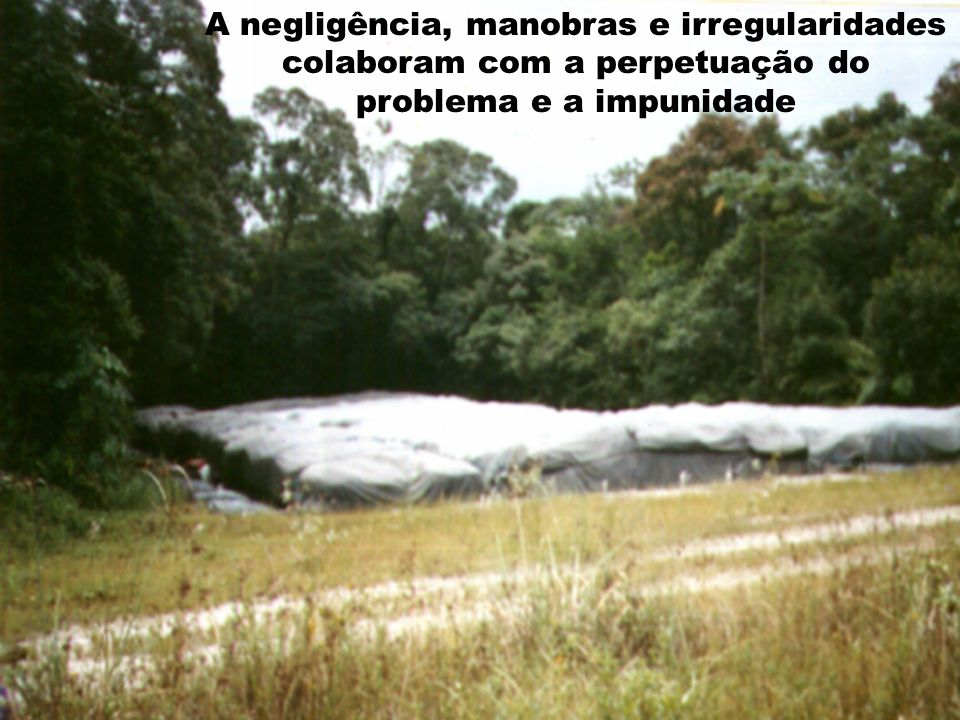 A negligência, manobras e irregularidades colaboram com a perpetuação do problema e a impunidade