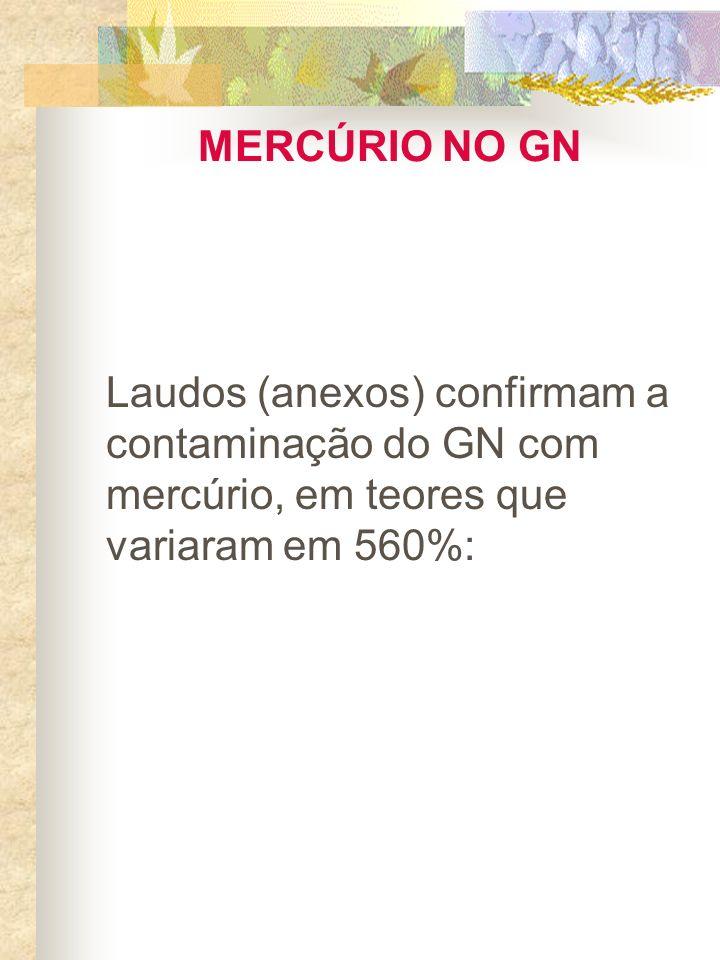MERCÚRIO NO GNLaudos (anexos) confirmam a contaminação do GN com mercúrio, em teores que variaram em 560%:
