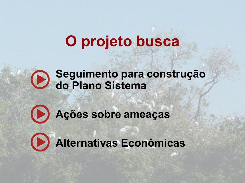 O projeto busca Seguimento para construção do Plano Sistema