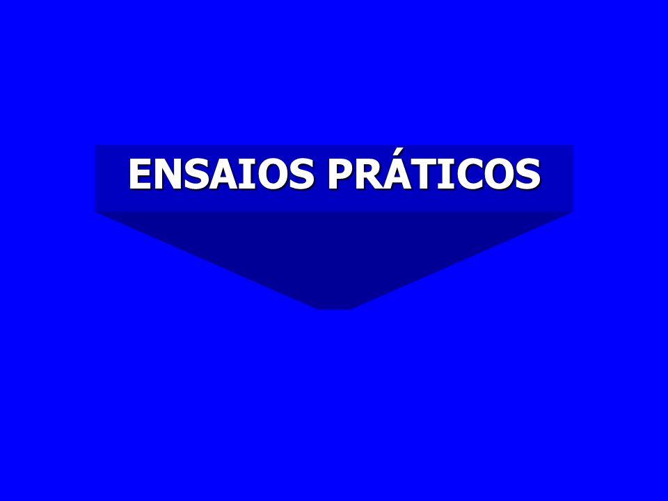 ENSAIOS PRÁTICOS