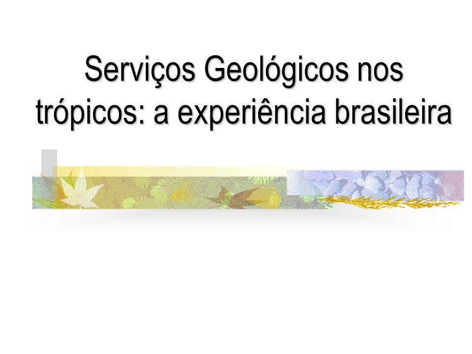 Serviços Geológicos nos trópicos: a experiência brasileira