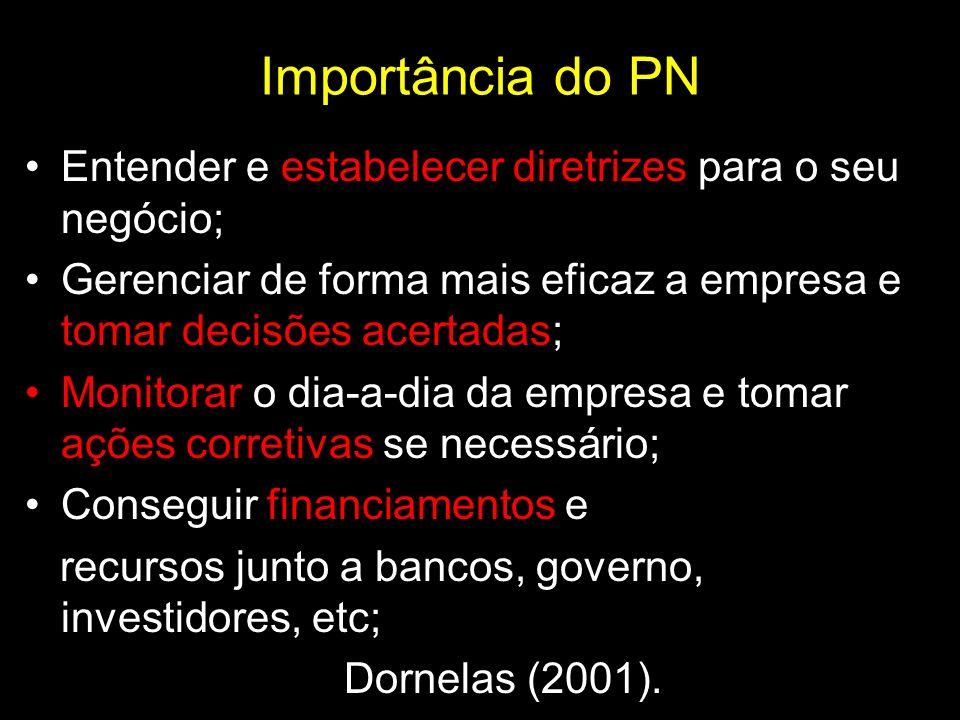 Importância do PNEntender e estabelecer diretrizes para o seu negócio; Gerenciar de forma mais eficaz a empresa e tomar decisões acertadas;