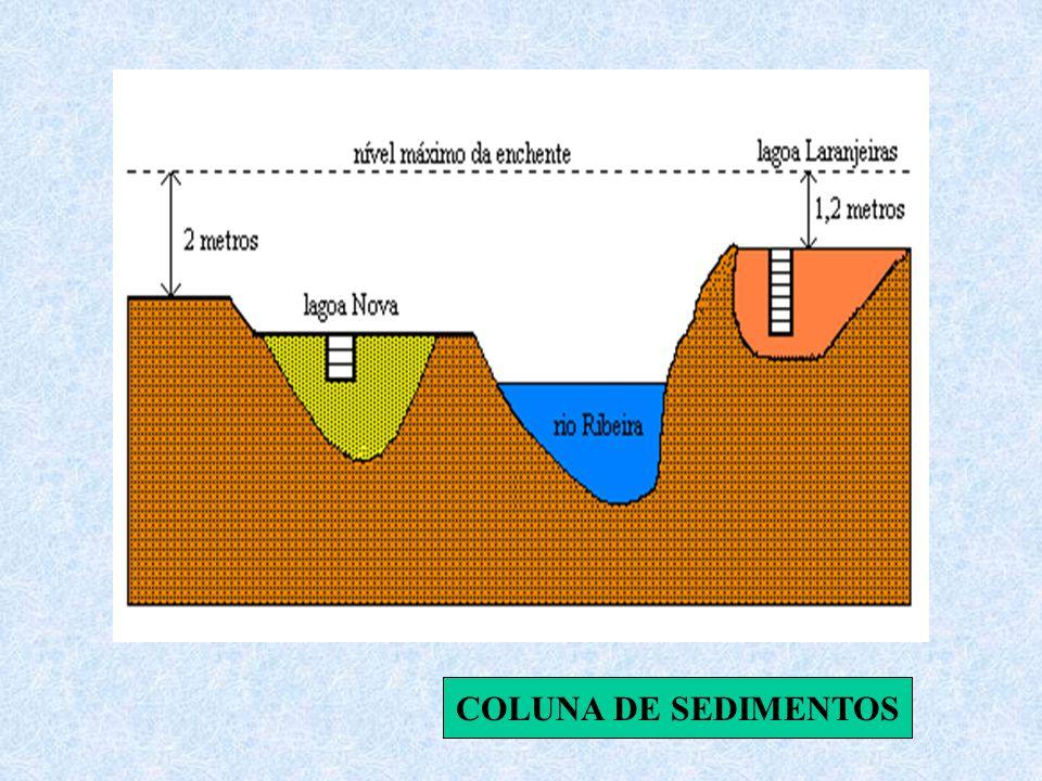 COLUNA DE SEDIMENTOS