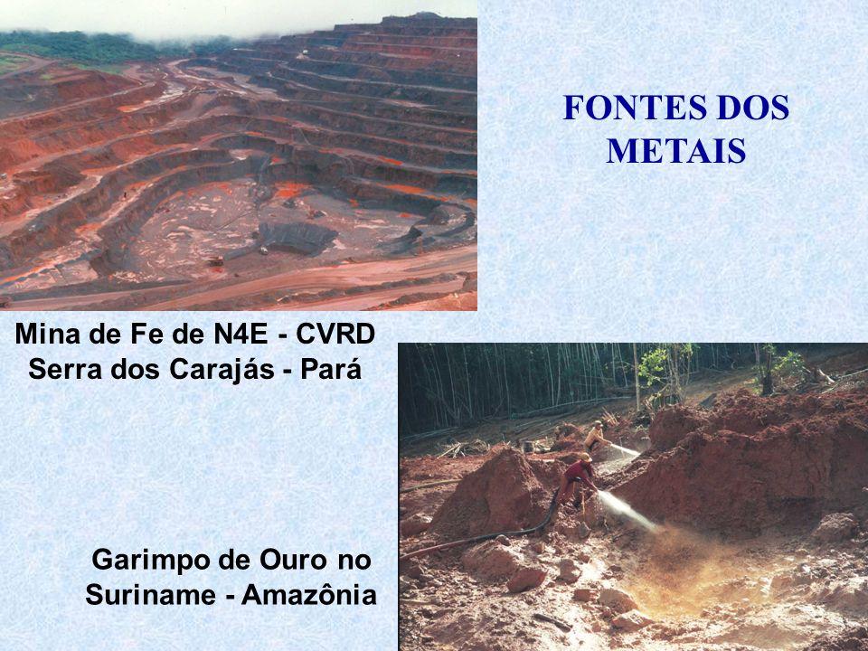 Serra dos Carajás - Pará Garimpo de Ouro no Suriname - Amazônia
