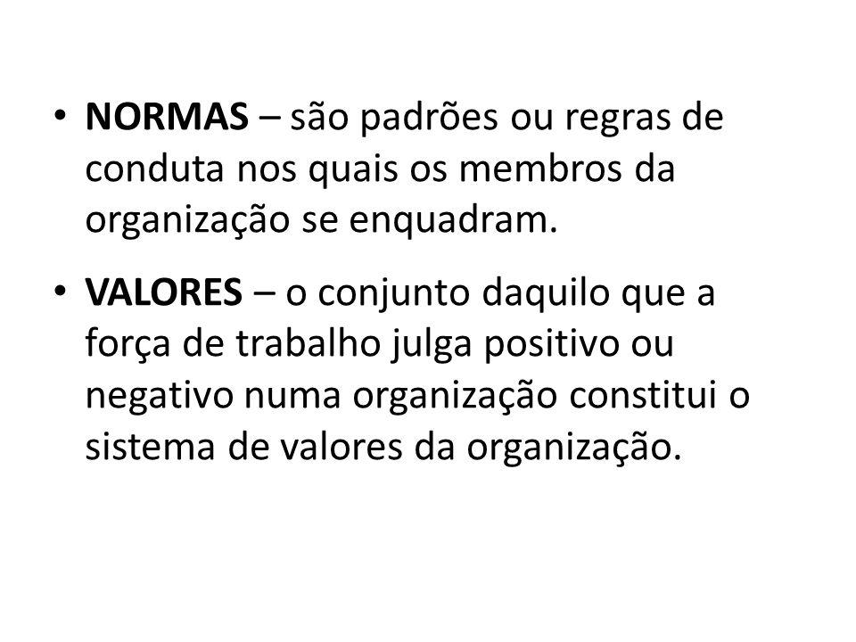 NORMAS – são padrões ou regras de conduta nos quais os membros da organização se enquadram.