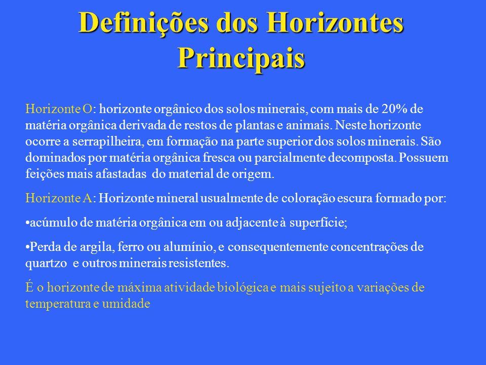 Definições dos Horizontes Principais