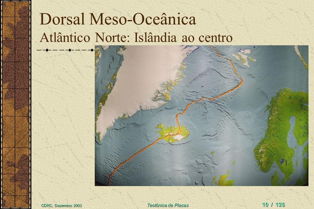 Dorsal Meso-Oceânica Atlântico Norte: Islândia ao centro