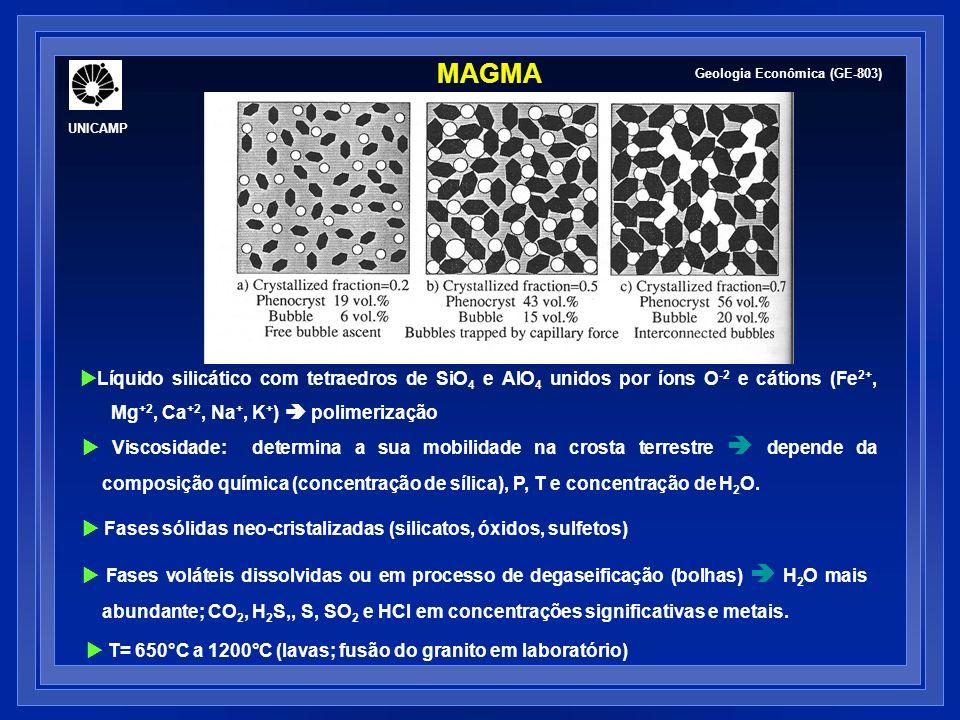 MAGMA UNICAMP. Geologia Econômica (GE-803)