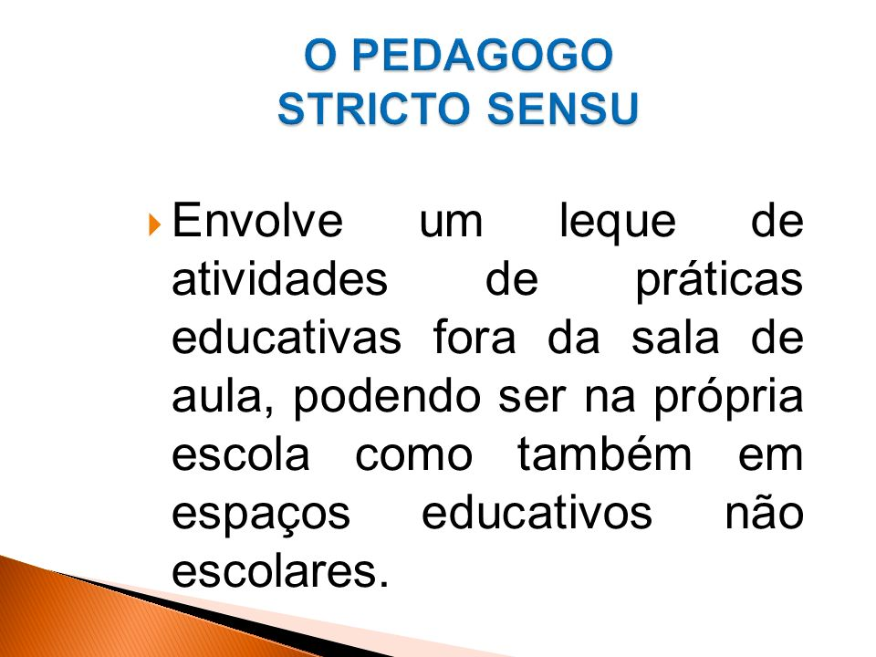 O PEDAGOGO STRICTO SENSU