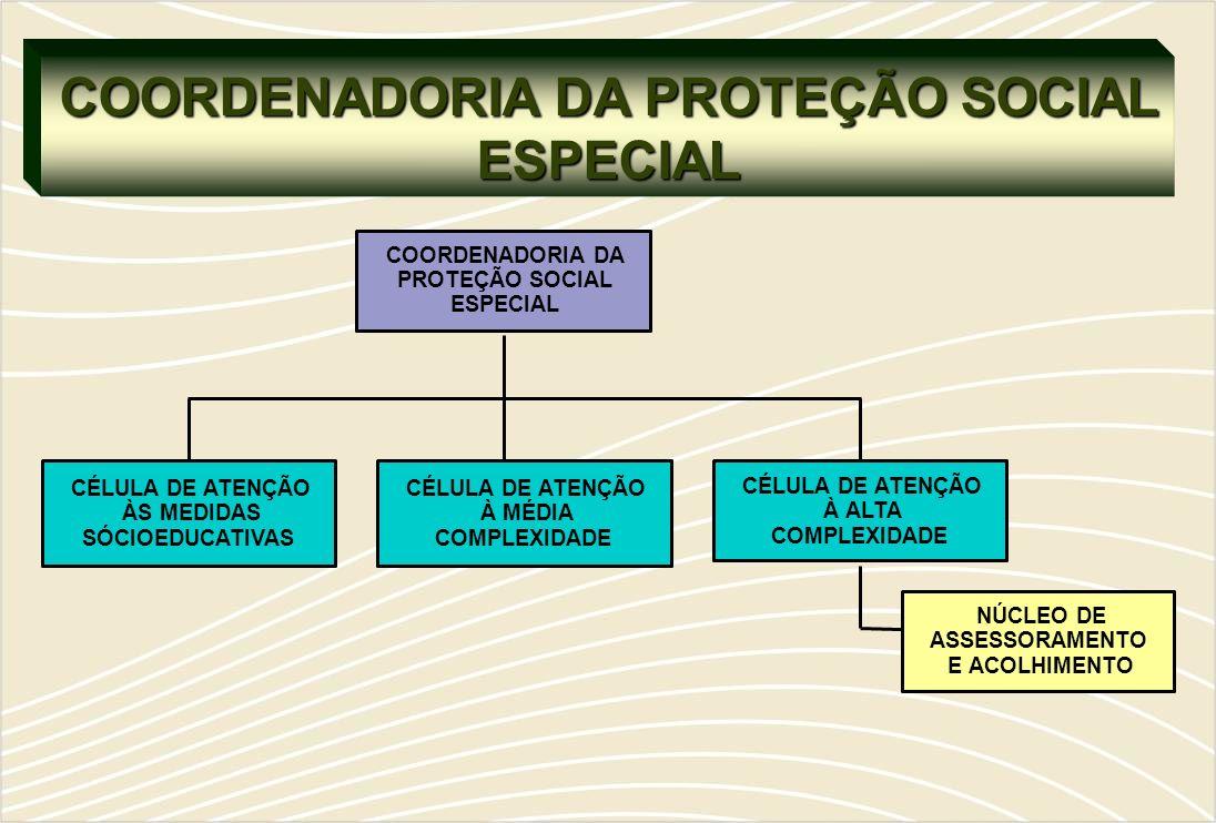COORDENADORIA DA PROTEÇÃO SOCIAL ESPECIAL
