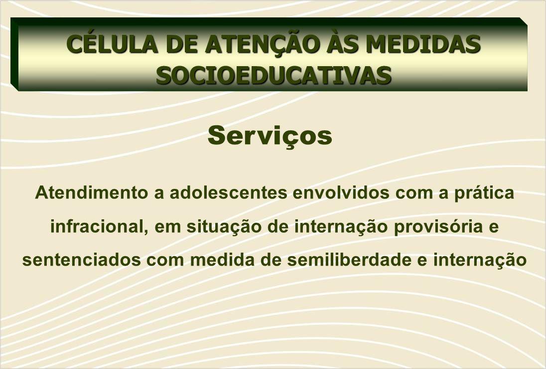 CÉLULA DE ATENÇÃO ÀS MEDIDAS SOCIOEDUCATIVAS