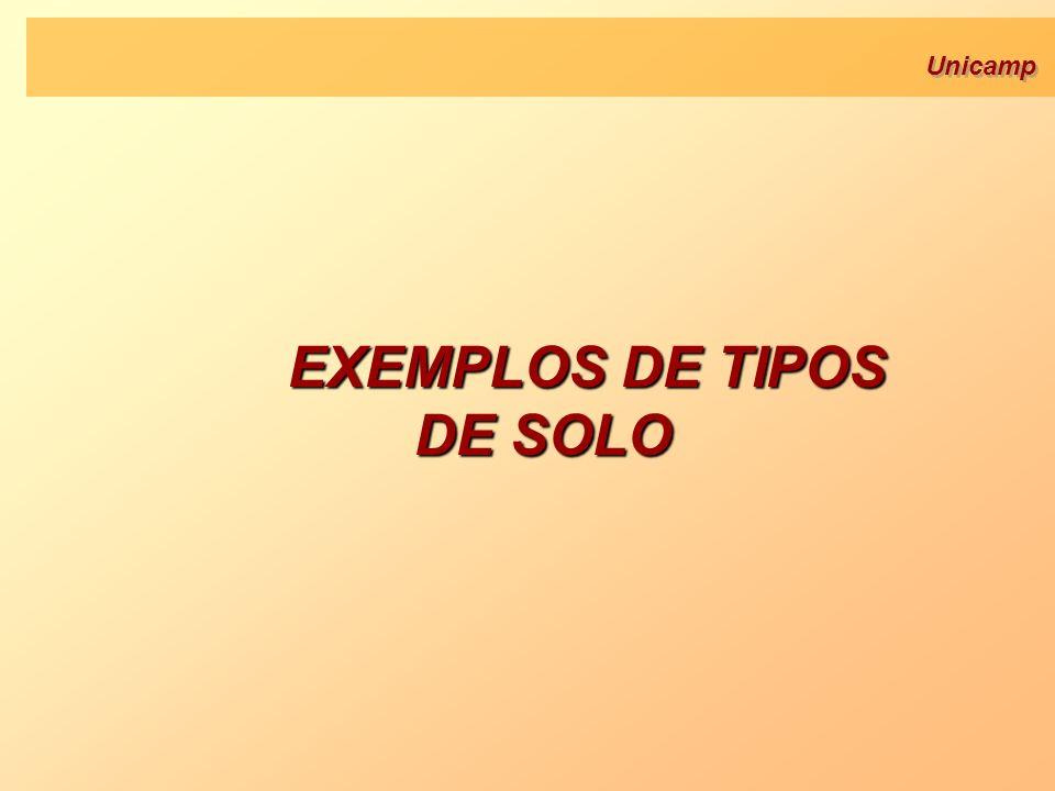 EXEMPLOS DE TIPOS DE SOLO
