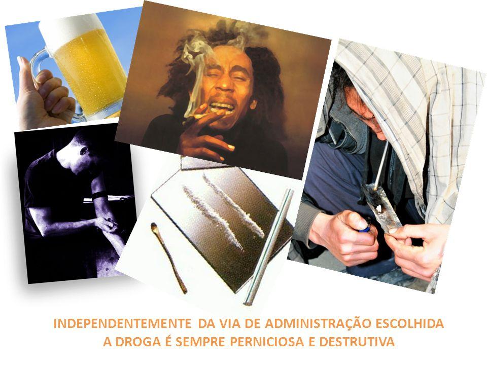 INDEPENDENTEMENTE DA VIA DE ADMINISTRAÇÃO ESCOLHIDA A DROGA É SEMPRE PERNICIOSA E DESTRUTIVA