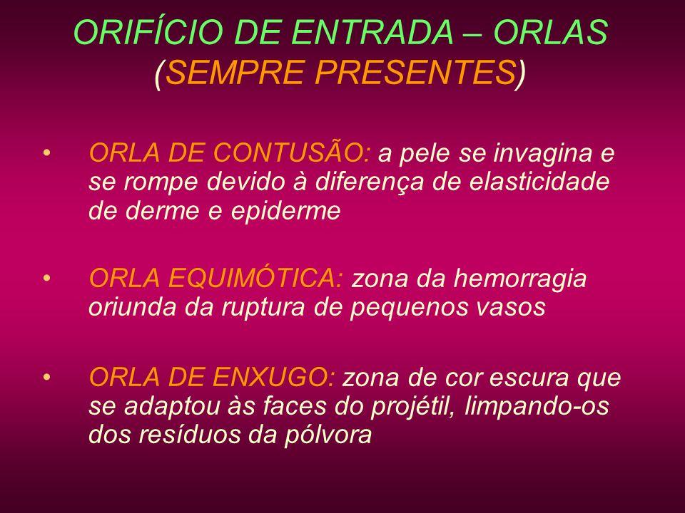 ORIFÍCIO DE ENTRADA – ORLAS (SEMPRE PRESENTES)
