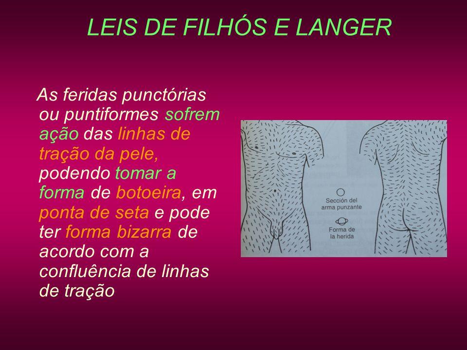 LEIS DE FILHÓS E LANGER