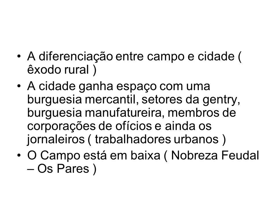 A diferenciação entre campo e cidade ( êxodo rural )
