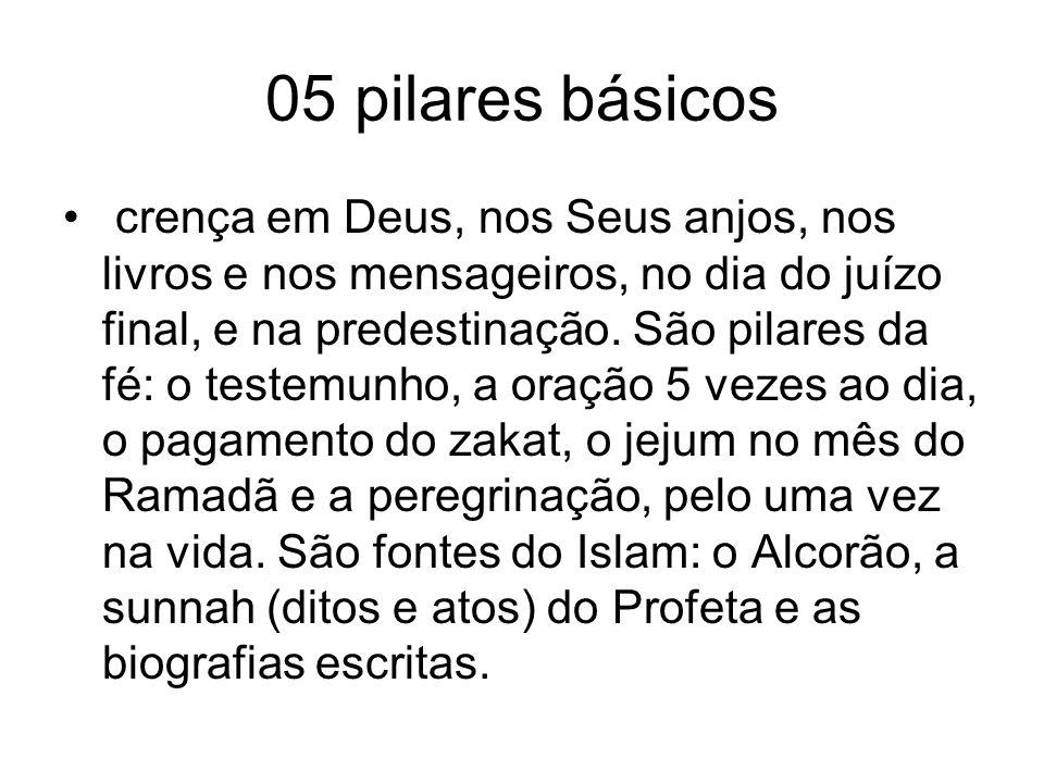 05 pilares básicos