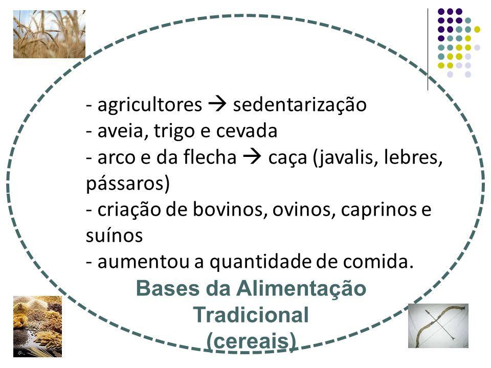 Bases da Alimentação Tradicional
