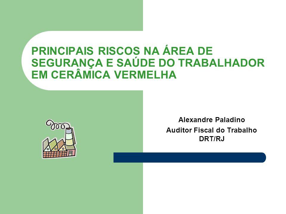 Alexandre Paladino Auditor Fiscal do Trabalho DRT/RJ
