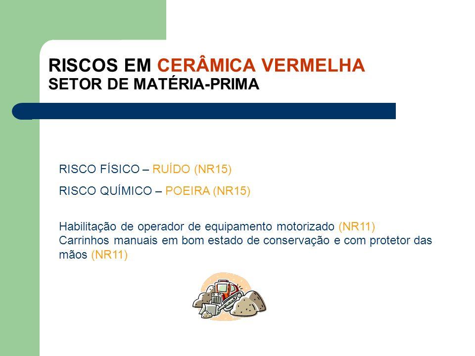 RISCOS EM CERÂMICA VERMELHA SETOR DE MATÉRIA-PRIMA