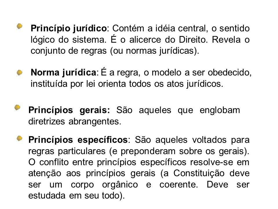 Princípio jurídico: Contém a idéia central, o sentido lógico do sistema. É o alicerce do Direito. Revela o conjunto de regras (ou normas jurídicas).