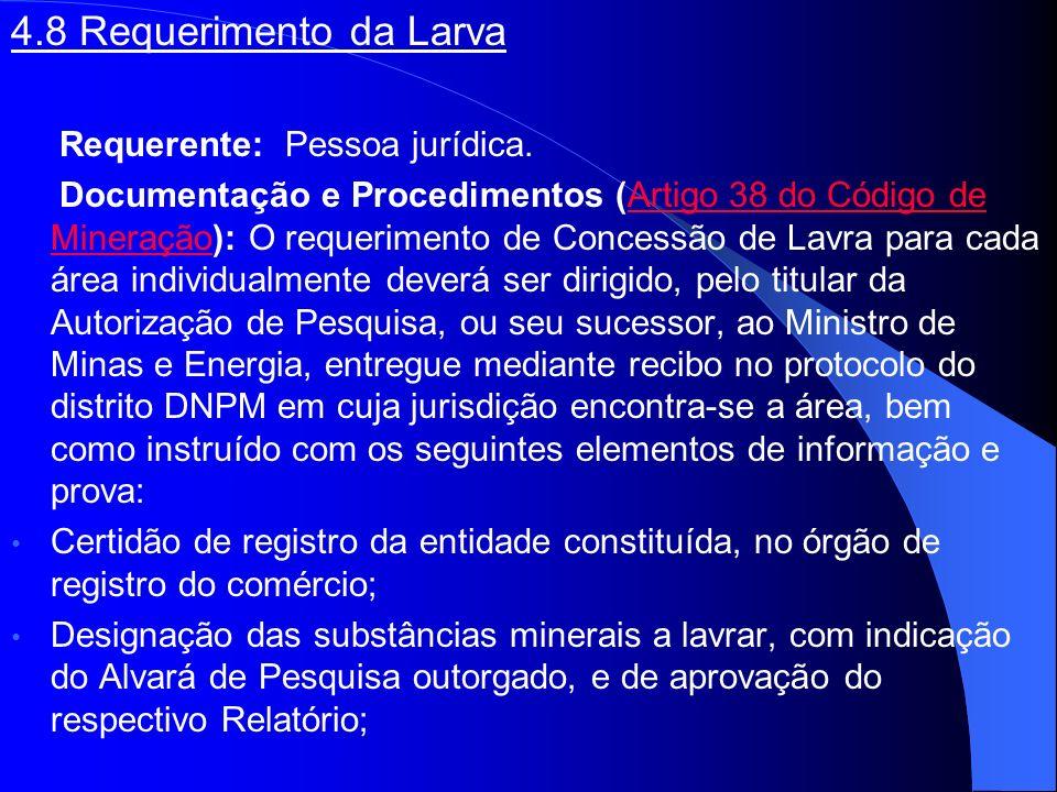 4.8 Requerimento da Larva Requerente: Pessoa jurídica.