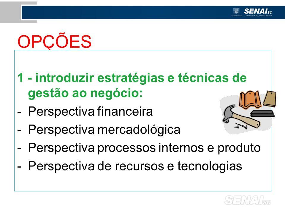 OPÇÕES 1 - introduzir estratégias e técnicas de gestão ao negócio: