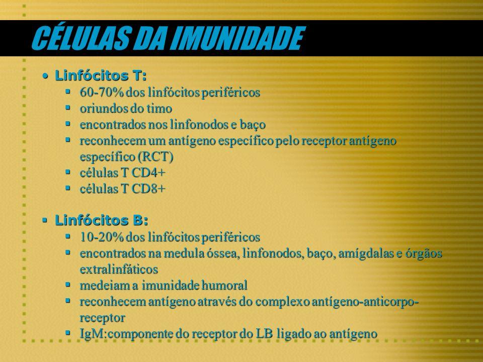 CÉLULAS DA IMUNIDADE Linfócitos T: 60-70% dos linfócitos periféricos