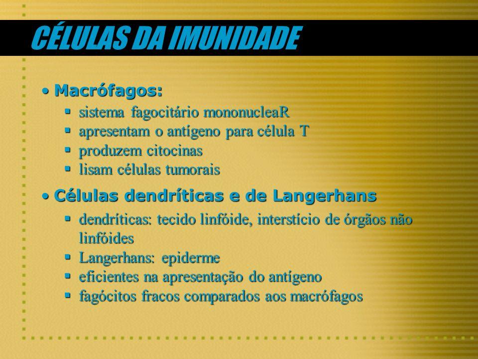 CÉLULAS DA IMUNIDADE Macrófagos: sistema fagocitário mononucleaR