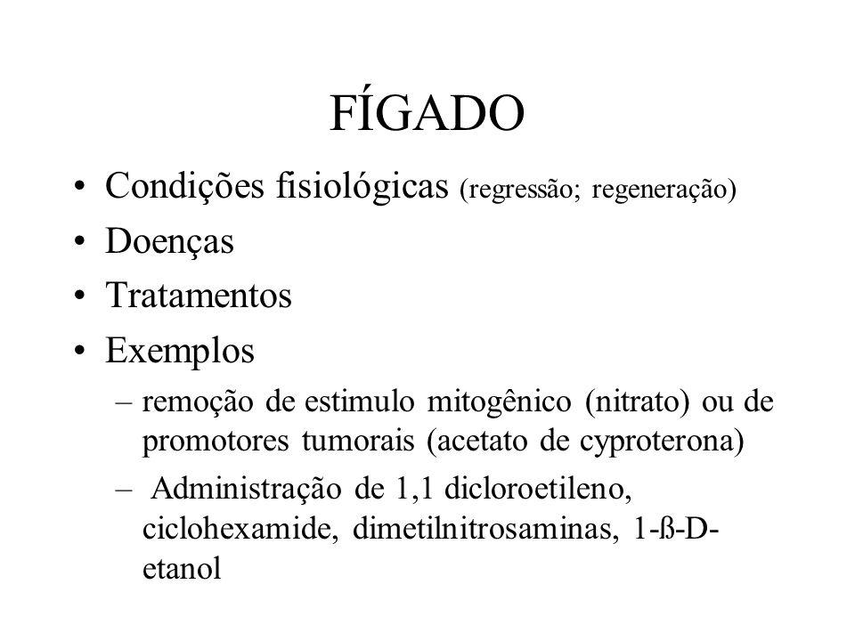 FÍGADO Condições fisiológicas (regressão; regeneração) Doenças