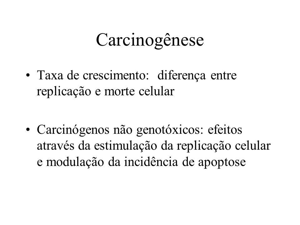 Carcinogênese Taxa de crescimento: diferença entre replicação e morte celular.