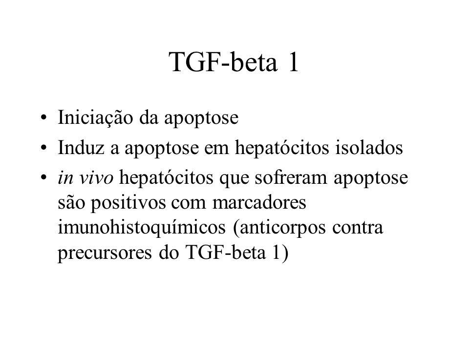 TGF-beta 1 Iniciação da apoptose