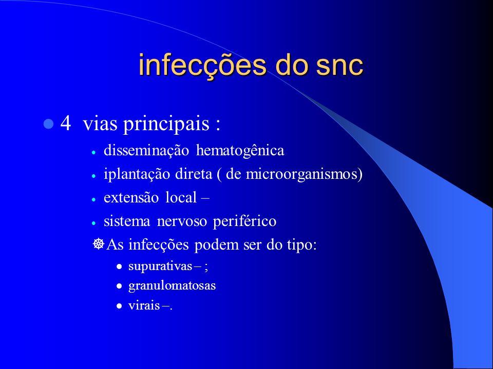 infecções do snc 4 vias principais : disseminação hematogênica