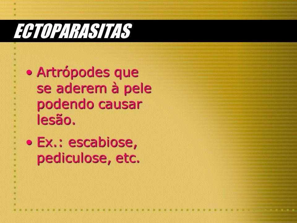 ECTOPARASITAS Artrópodes que se aderem à pele podendo causar lesão.