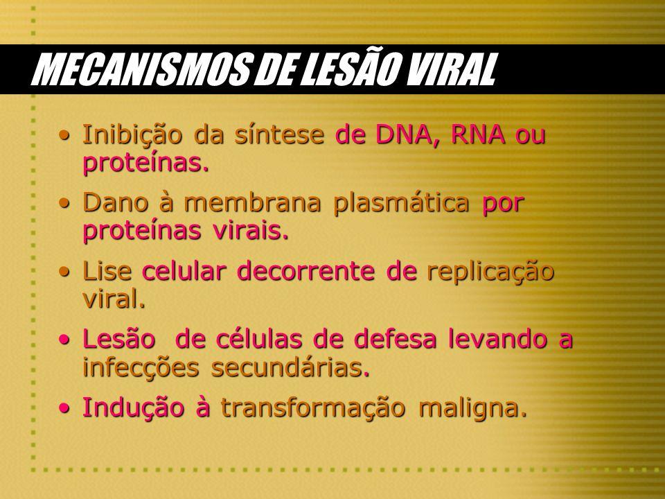 MECANISMOS DE LESÃO VIRAL