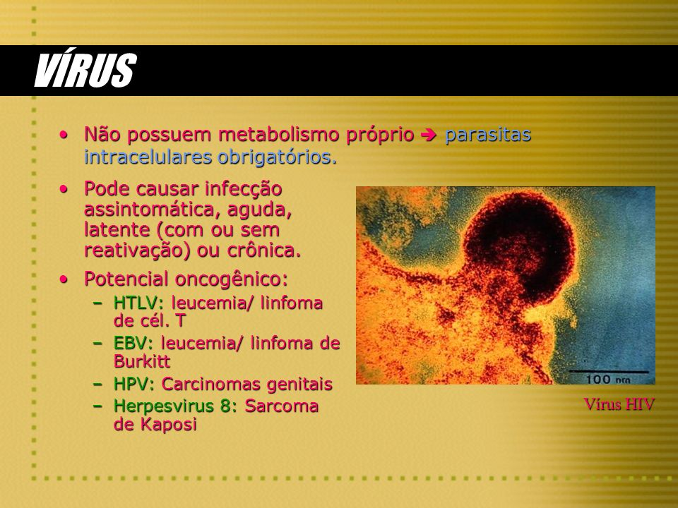 VÍRUS Não possuem metabolismo próprio  parasitas intracelulares obrigatórios.