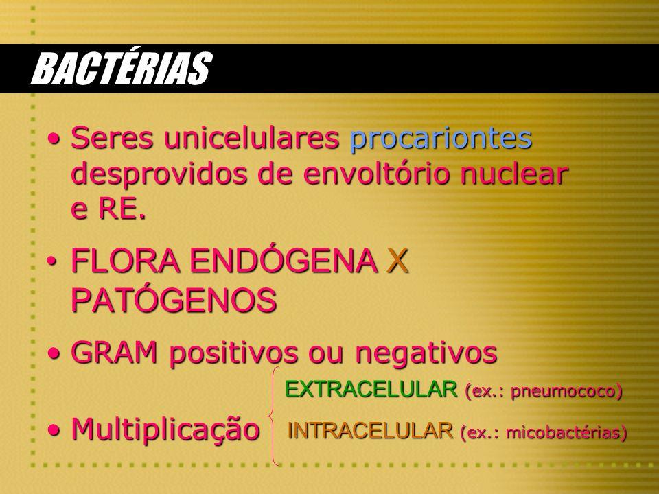 BACTÉRIAS FLORA ENDÓGENA X PATÓGENOS