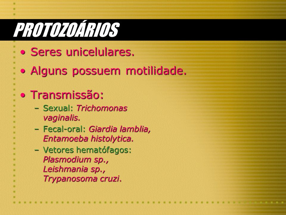 PROTOZOÁRIOS Seres unicelulares. Alguns possuem motilidade.