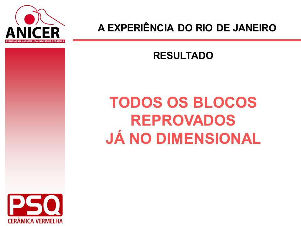 A EXPERIÊNCIA DO RIO DE JANEIRO TODOS OS BLOCOS REPROVADOS