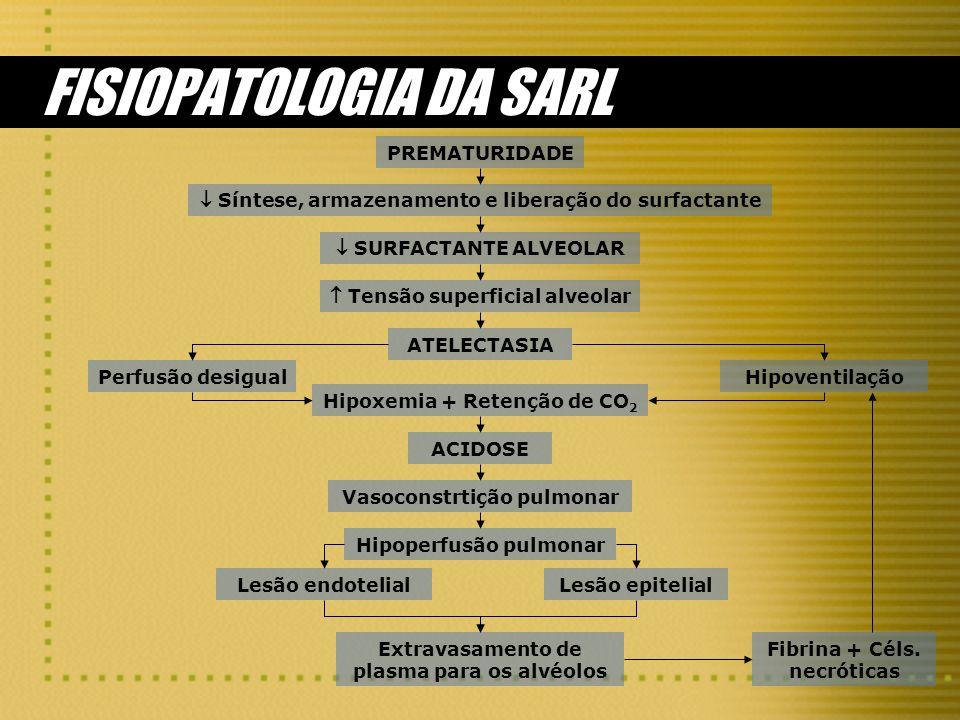 FISIOPATOLOGIA DA SARL