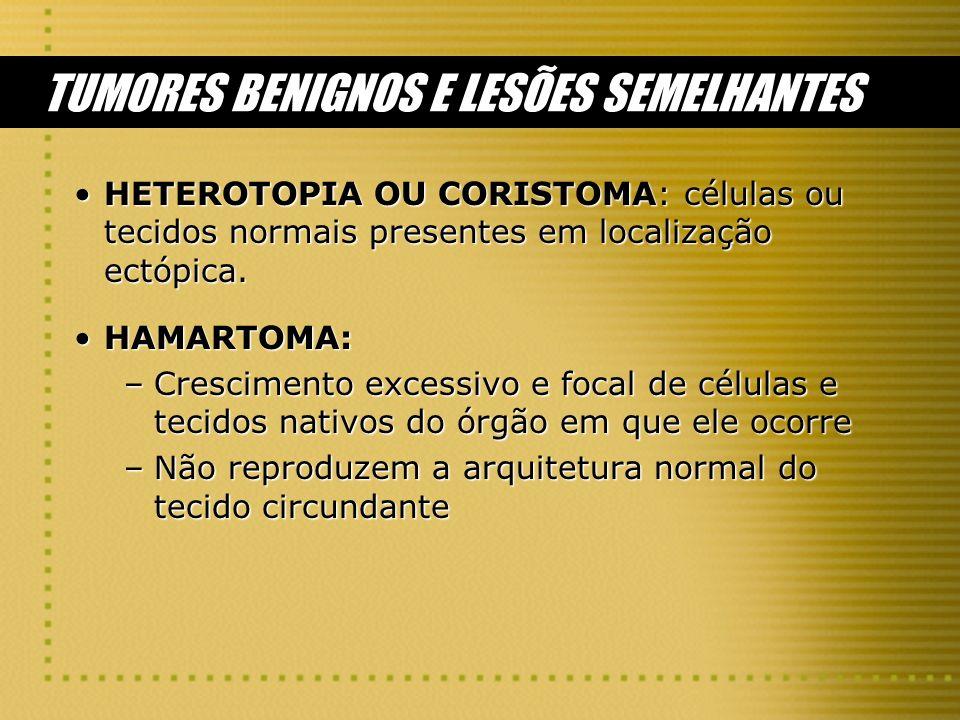 TUMORES BENIGNOS E LESÕES SEMELHANTES
